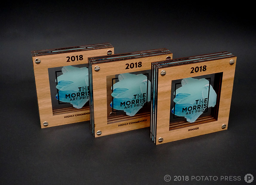 custom timber acrylic awards